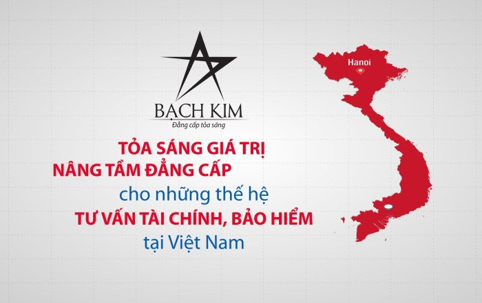 Video clip giới thiệu Bạch Kim Corporation