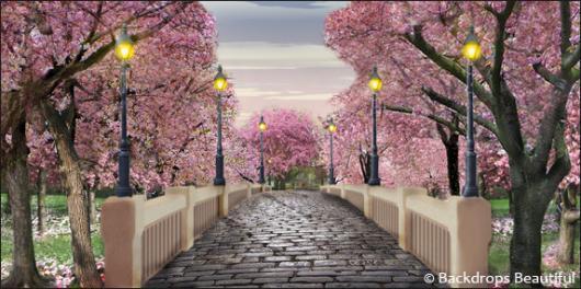 Falling Rose Petals Wallpaper Backdrops Beautiful Blog We Share More Than Just