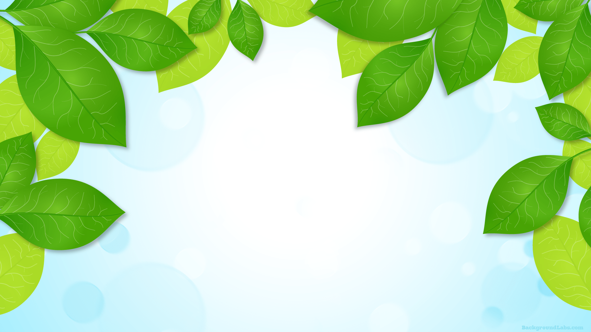 Wallpaper Design Black Green Leaves Frame Background Background Labs