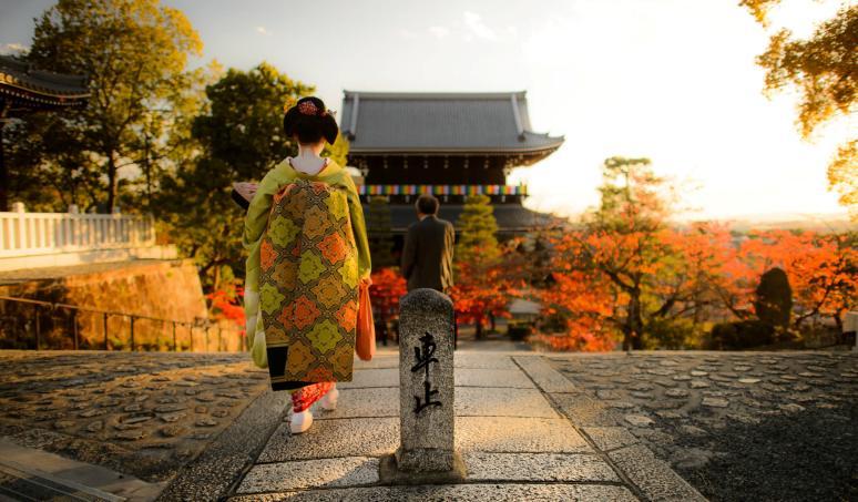 Tokyo Geisha Girl Wallpaper Background Japan Backpacking Guide Travel Tips On Visas Budgets