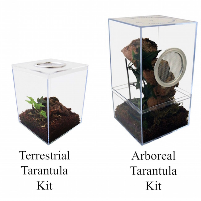 tarantula kit comparison