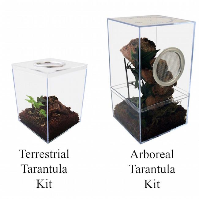 tarantula kit comparison