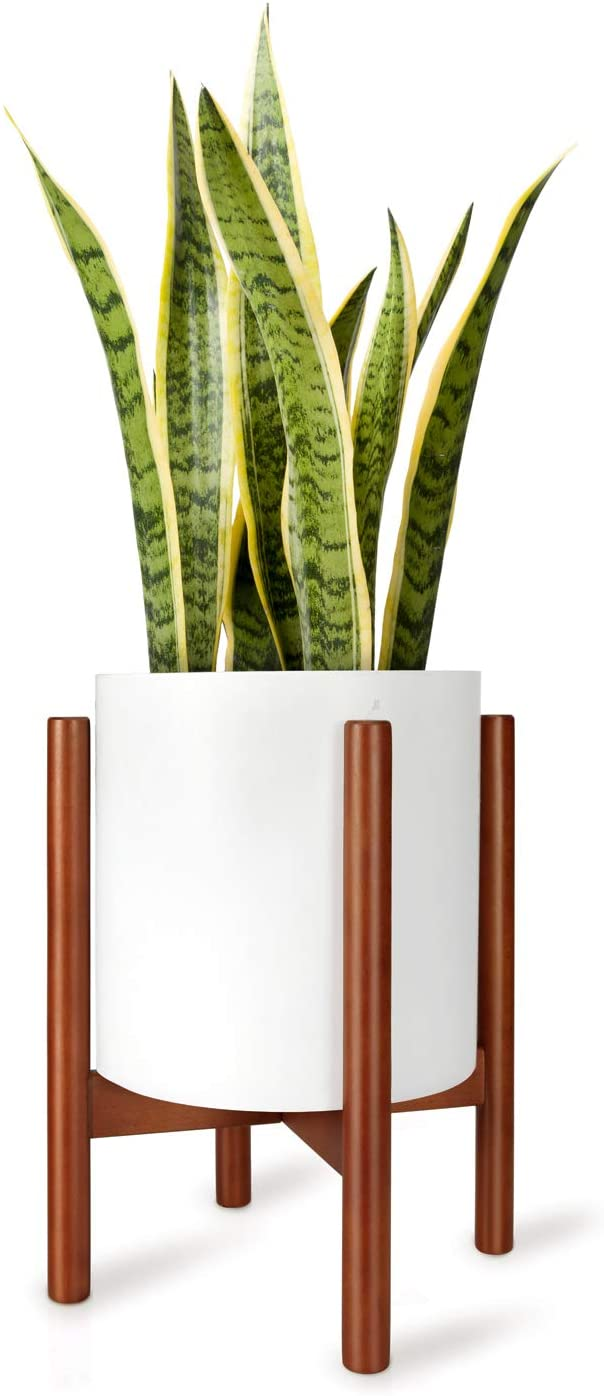 The Best Indoor Plant Stands Shelves For Your Home In 2020