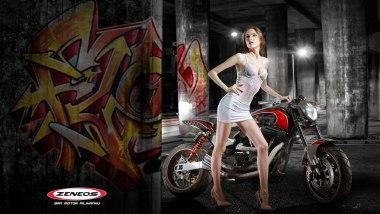Zeneos Turino - HD Dyna Custom