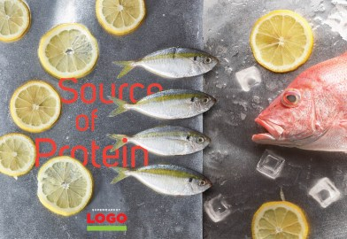 Protein from Fish