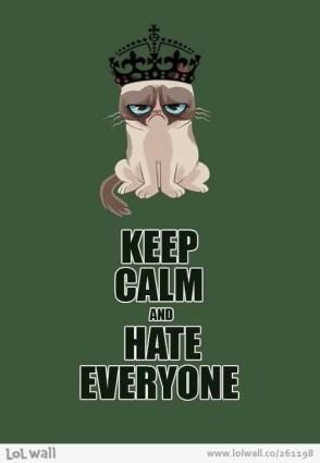 calm grumpy cat
