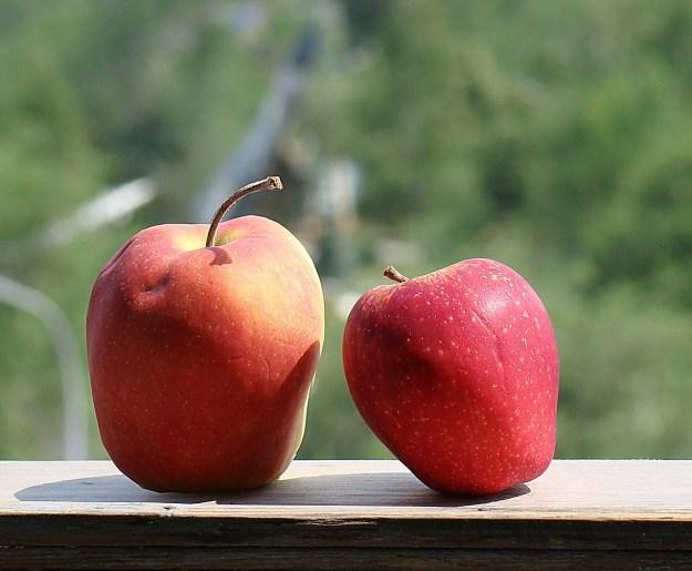 apples-222353_1280