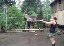 Janele - blow dart