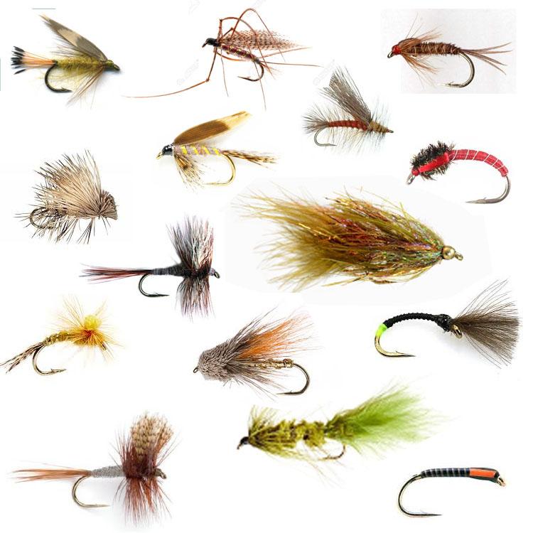 Leeda Profil Selecta Trout Fly Fishing Cast Leader 15ft