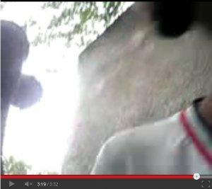 São Gonçalo dos Campos: vídeo de garota de 15 anos fazendo sexo oral em homem cai na Internet