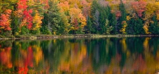 cores-outono-2