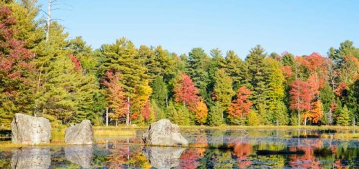 hardy-lake-provincial-park-24