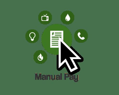 manualPay
