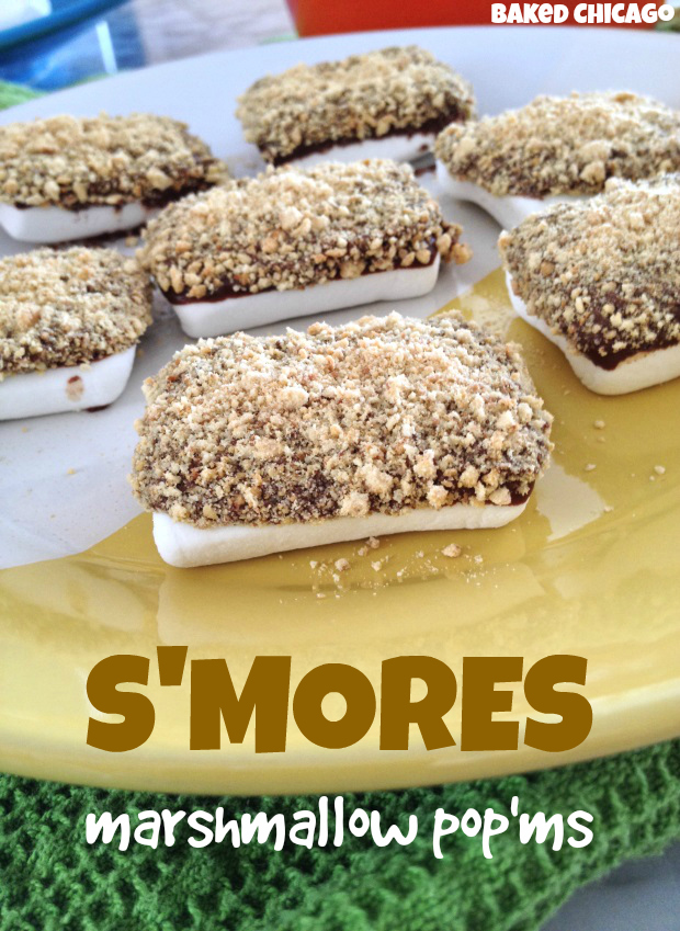 s'mores marshmallow pop'ms