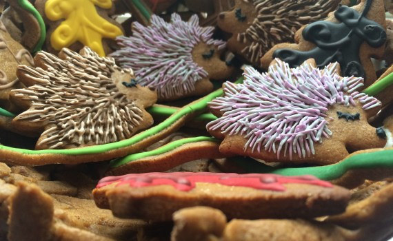 hedgehog gingerbread cookies