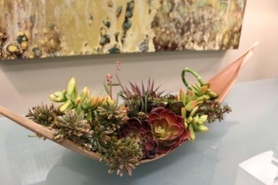 succulent arrangement dallas designed