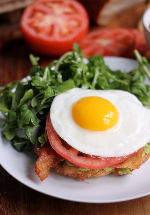 bacon-avocado-tomato-egg-sandwich
