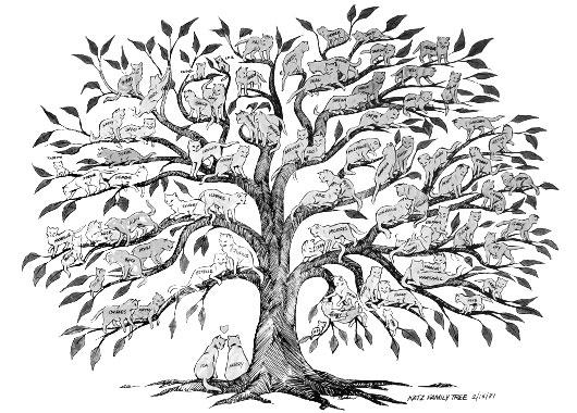 Custom Family Trees Ida + Harry Katz\u0027 tree