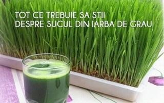 Suc-din-iarba-de-grau
