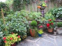 11 Most Essential Container Garden Design Tips | Designing ...