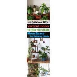 Small Crop Of Diy Vertical Garden Indoor