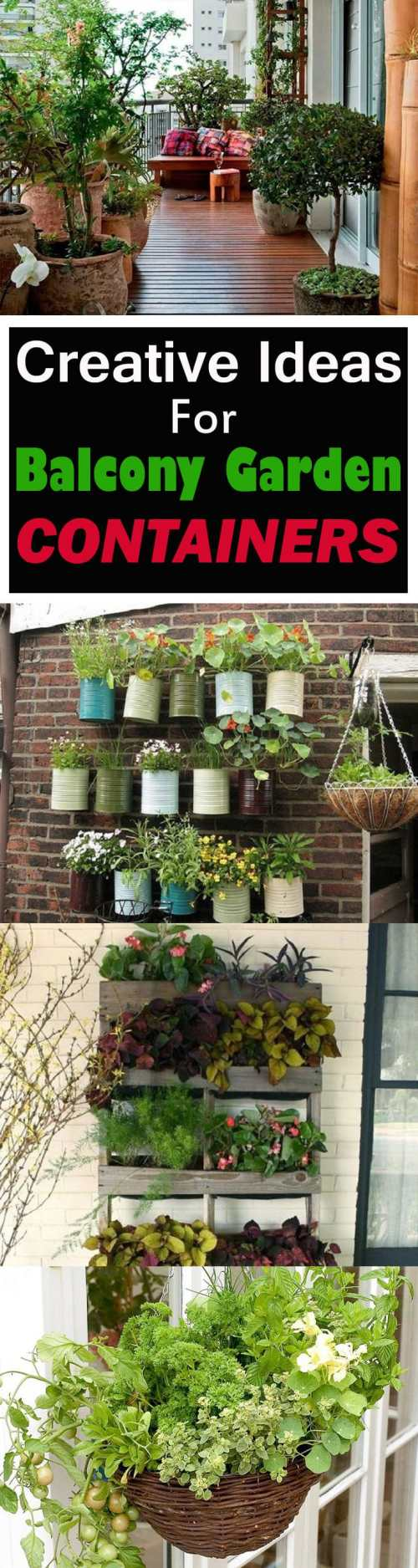 Medium Of Balcony Gardening Ideas