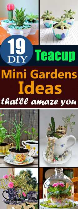 Small Of Diy Mini Garden Ideas