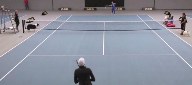 Encontre o tênis que mais combina com seu estilo (Foto: Imaxtree)