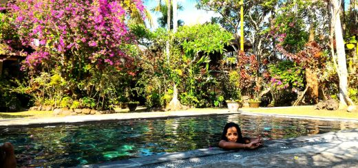 Journée piscine a Ubud au Ubud Inn - balisolo 2015 (34)