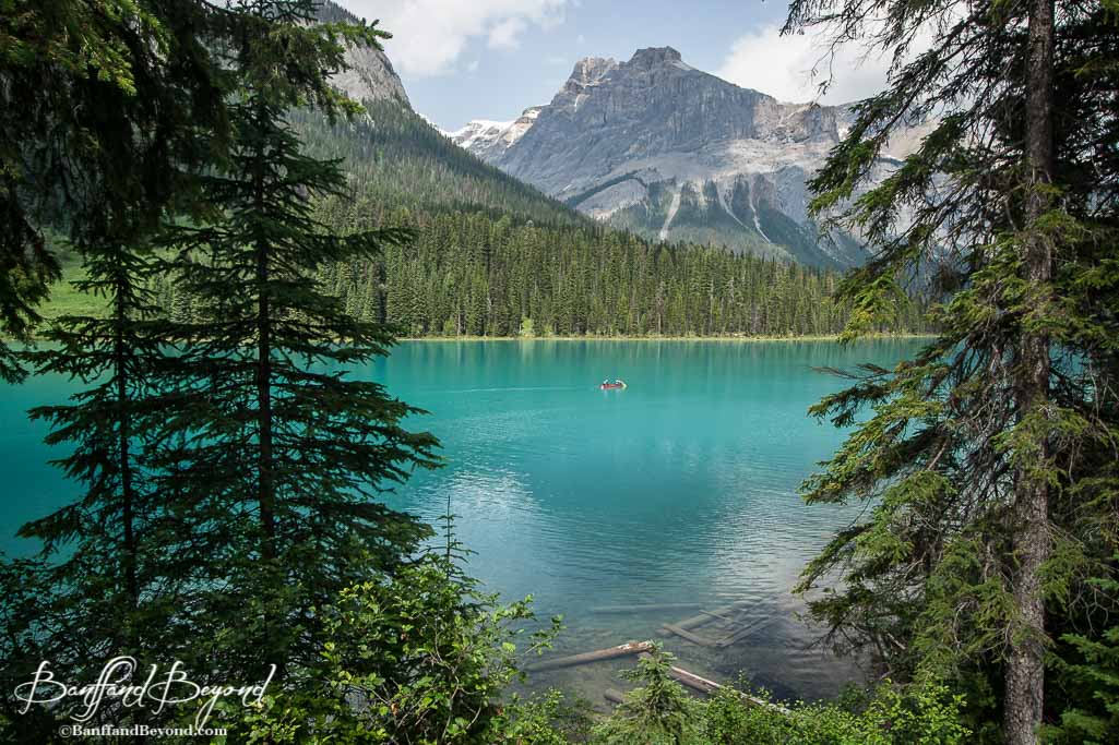 Falls Wallpaper Waterfall Highlights And Day Itinerary For Yoho National Park