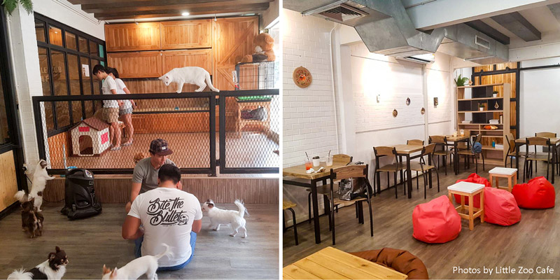 Café Cafés 5 Awesome Themed Instagramable Cafes In Bangkok