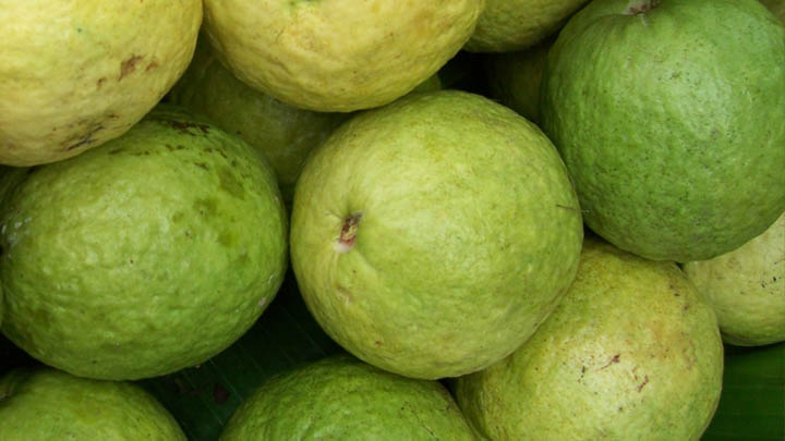 Guavas. Photo credit: Wikipedia