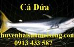 Khô cá dứa 1 nắng Cần Giờ giá bao nhiêu 1kg-bán ở đâu