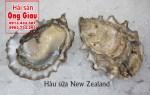 Mua hàu sữa New Zealand ở đâu giá bao nhiêu 1 kg