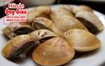 Giá bán ngao biển cực rẻ tại hải sản Ông Giàu