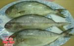 Nơi mua cá trác tươi sống hiện nay tại TP. Hồ Chí Minh  bao nhiêu 1kg