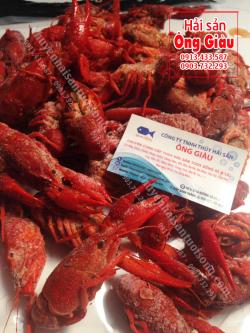 Mua Crawfish tươi sống ở đâu bán tại TpHCM – giá bao nhiêu tiền 1 kg