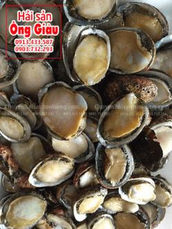 Bào ngư Phú Quốc giá bán bao nhiêu 1 kg ở TpHCM hiện nay
