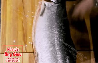 """Cách làm sushi cá hồi sống """"hớp hồn"""" thực khách từ bí quyết gia truyền"""