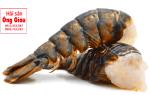 Thân tôm hùm Alaska bán ở đâu – mua giá bao nhiêu tiền 1kg