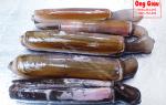 Ốc Móng Tay Trúc là ốc gì – mua ở đâu bán – giá bao nhiêu tiền 1kg