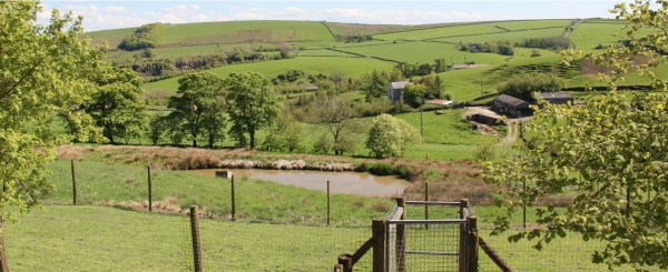 Banks Ghyll Kennels