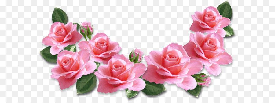 Rose Flower Wallpaper Hd Free Download Rose Flower Pink Clip Art Pink Roses Decoration Png