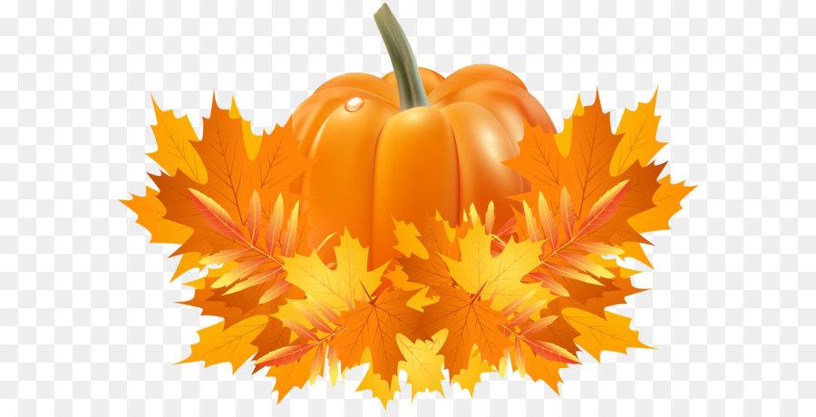 Fall Leaves And Pumpkins Wallpaper Pumpkin Pie Cucurbita Pepo Cucurbita Argyrosperma