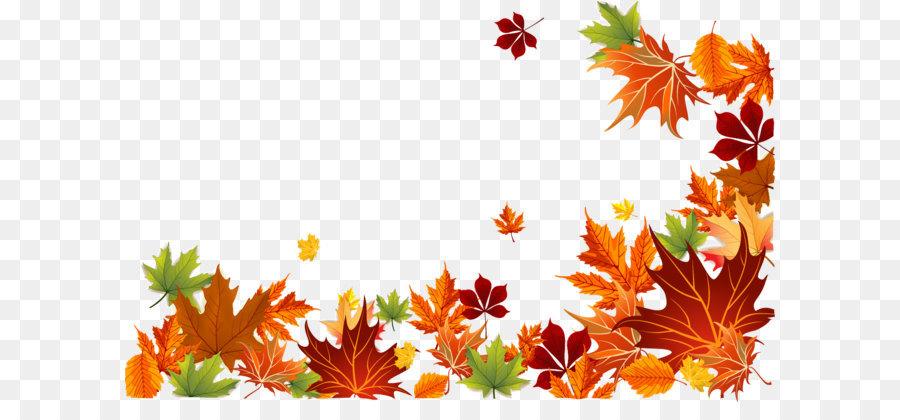 Free Fall Tree Wallpaper Autumn Leaf Color Autumn Leaf Color Euclidean Vector