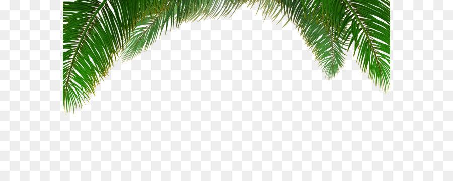 Cute Christmas Pattern Wallpaper Arecaceae Tree Euclidean Vector Leaf Vector Palm Tree