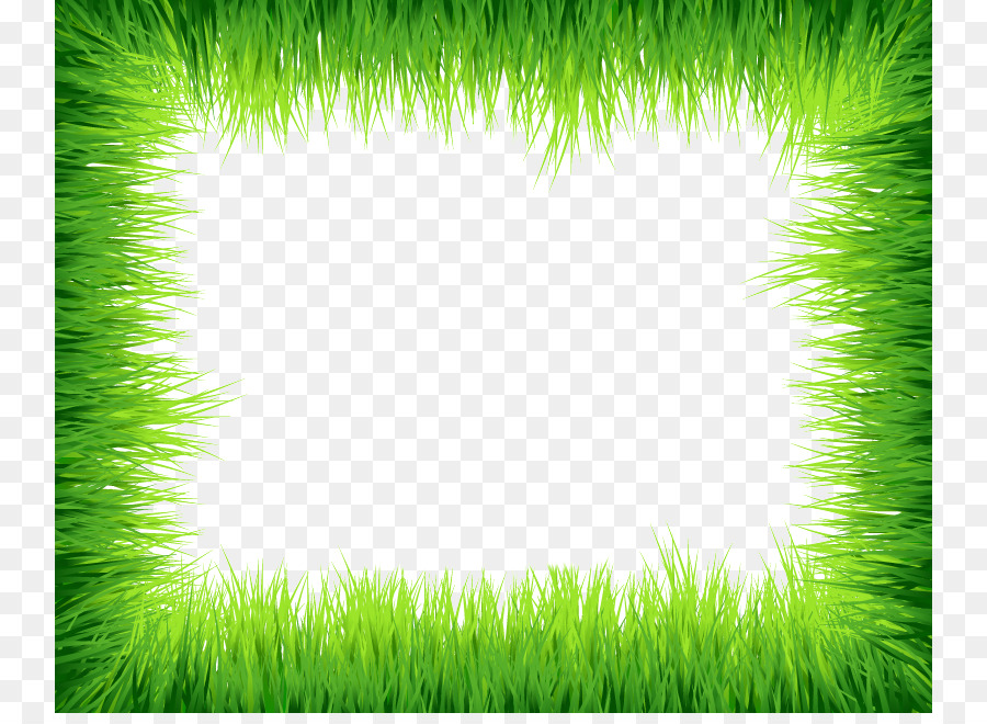 Grass Euclidean vector Clip art - Green Border Frame PNG Photos png - green photo frame