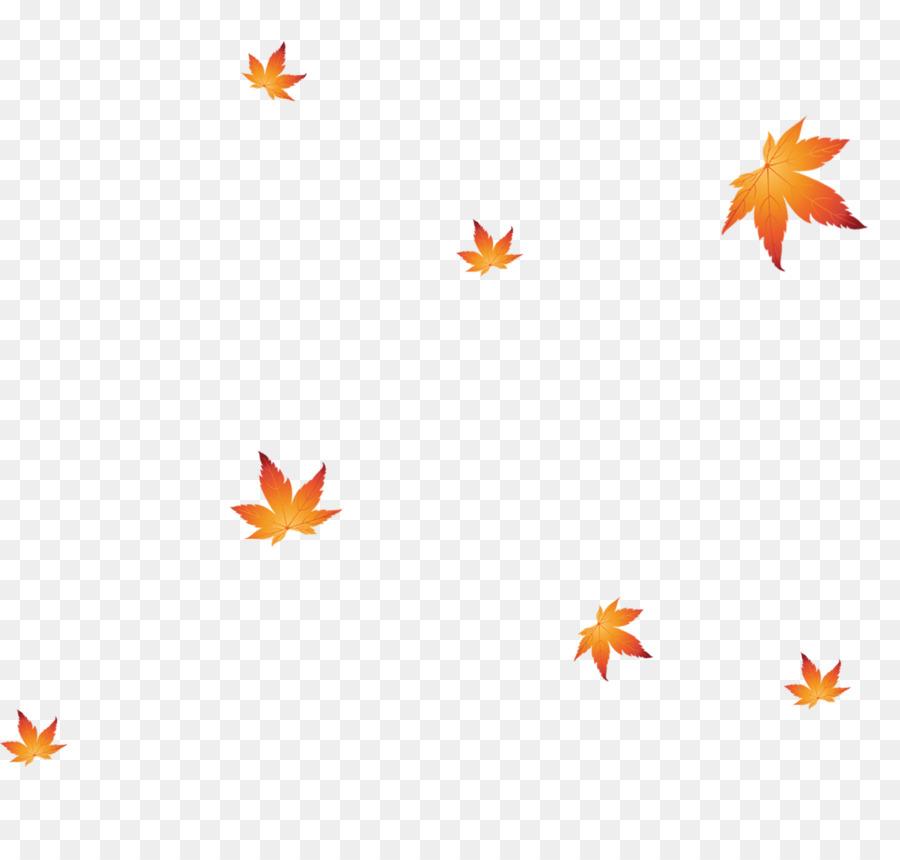 Shoe Maple leaf - Simple and elegant bubbles floating petals png