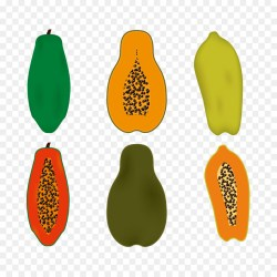 Small Of How To Cut A Papaya