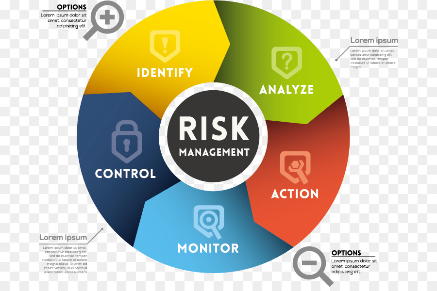 Risk Management Plan Business Organization - Vector Business chart